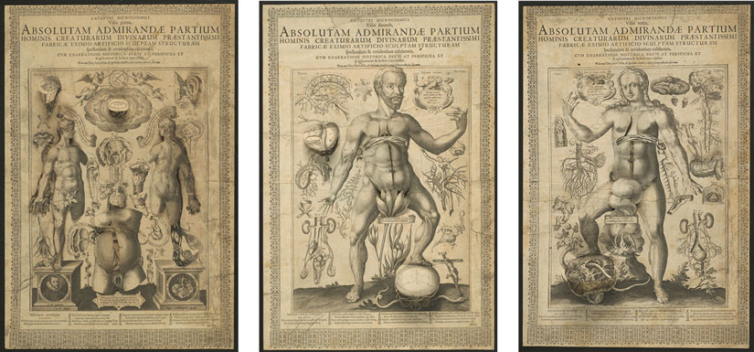 Printed Bodies And The Materiality Of Early Modern Prints Art In
