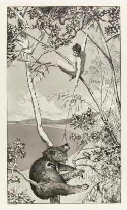 Max Klinger, Bear and Fairy (1881), etching and aquatint printed on chine collé, plate 42 x 28.8 cm. Bequeathed by Henry Scipio Reitlinger 1991, ©The Fitzwilliam Museum, Cambridge.