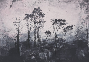 Elizabeth Magill, Parlous Land (2006), lithograph, 61.0 x 84.5 cm. Edition of 35. Printed by Paupers Press, published by Paragon Press.