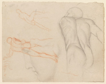 Edgar Degas, Studies of the Borghese Gladiator (ca. 1853–56), black and red chalks on cream laid paper, 24.2 x 31.3 cm. ©Sterling and Francine Clark Art Institute, Williamstown, MA, 1971.41.