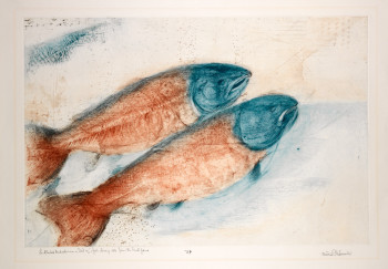 Fig. 3. Munio Makuuchi, Landlocked Midwesterners / Dad Sez a Fish Always Rots from the Head First (n.d.), drypoint printed in blue and red on heavyweight, cream-colored Arches paper, sheet 75.2 cm x 106.2 cm; image 60.2 cm x 90.2 cm. State proof, edition unknown. Printed by Andrew Balkin, ACB Editions, Madison, WI. Smith College Museum of Art. Purchased with the Elizabeth Halsey Dock, class of 1933, Fund.