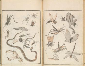 "Katsushika Hokusai, Hokusai Manga (Random sketches by Hokusai), sketchbook number 1 (January 1814), illustrated book with colored woodblocks,""hanshi-bon"" format, approx. 22.8 cm x 15.8 cm. Katsushika Hokusai Museum of Art, Tsuwano. ©Katsushika Hokusai Museum of Art."