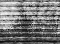 Fig. 4b. Christiane Baumgartner, 1 Sekunde (2004), one from the portfolio of 25 woodcuts, 26 x 33 cm. Edition of 25. Image courtesy Alan Cristea Gallery, ©VG Bild-Kunst, Bonn 2011.